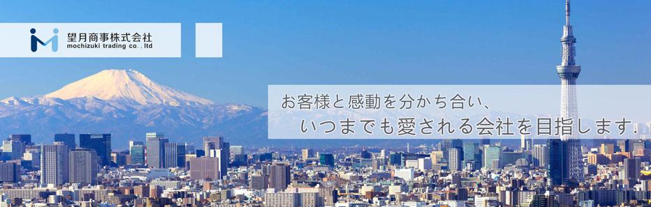 東京 賃貸 マンション 戸建 不動産のことなら–望月商事株式会社